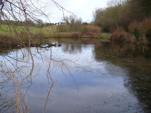 Lydling Farm Pond