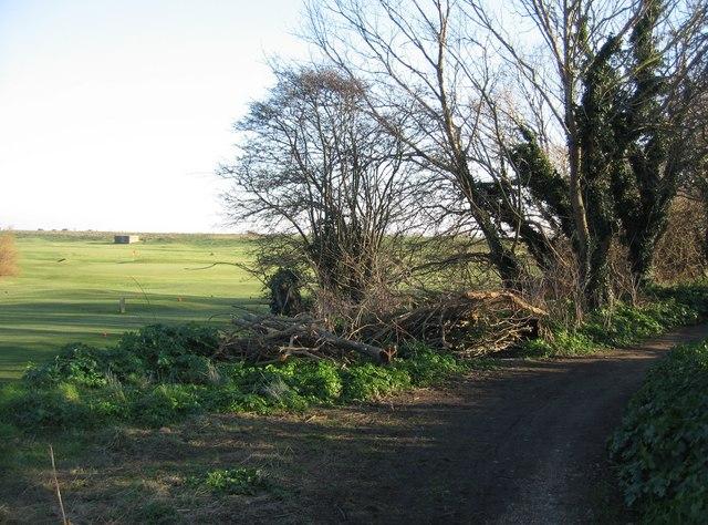 Golf course & path