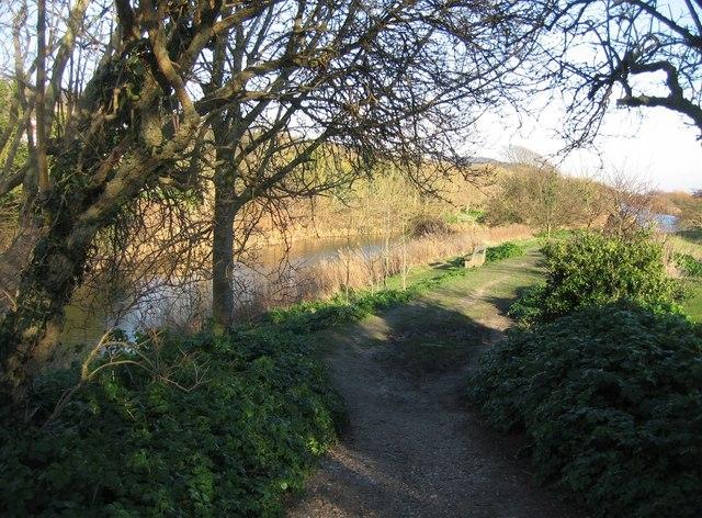 Canal & footpath