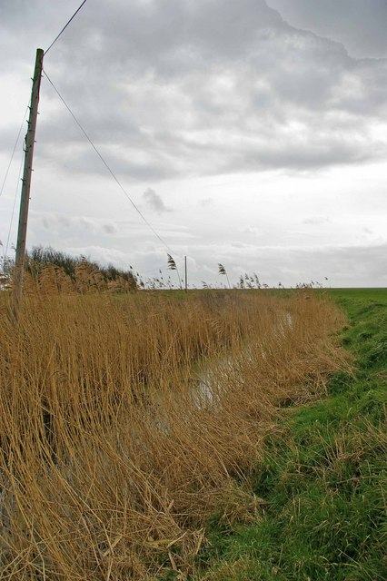 Ditch Near Twizzelfoot Bridge