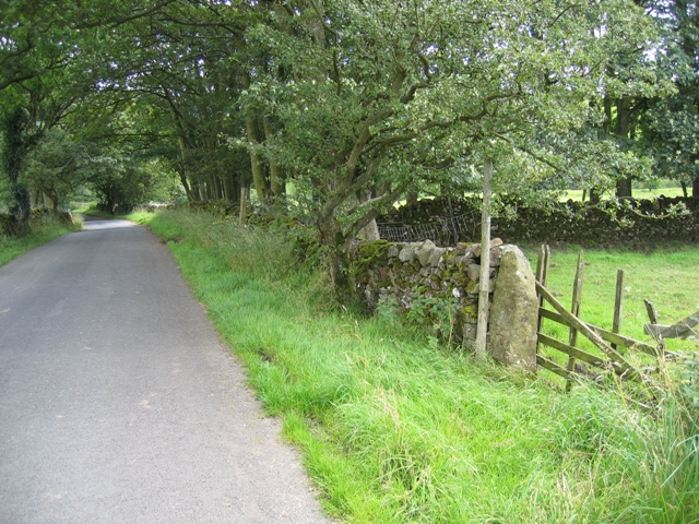 Cow Close Lane, field gate, and benchmark