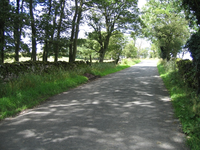 Cow Close Lane near Kirkby Malham
