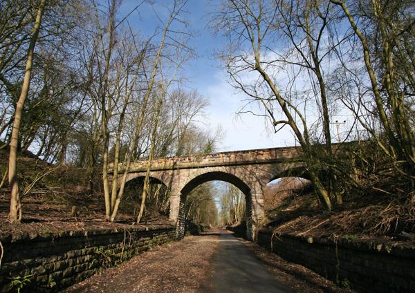 Thorpe Arch Railway Cutting