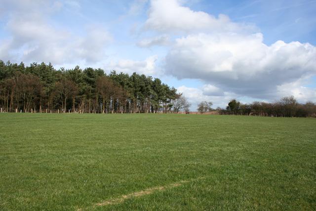 Farmland at Peckforton