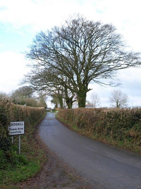 Lane approaching Bagnall