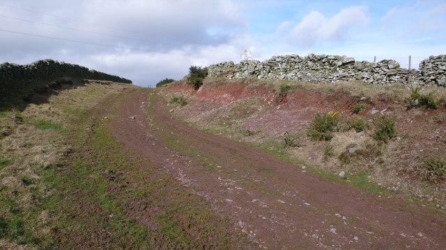 Farm track , Trabrown
