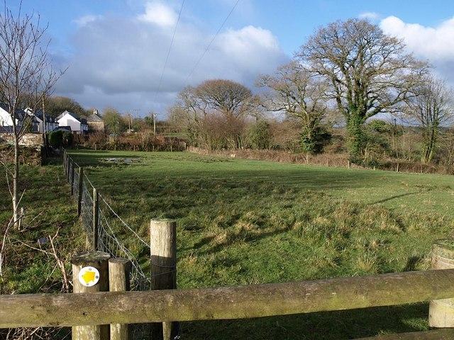 Field at Badgall