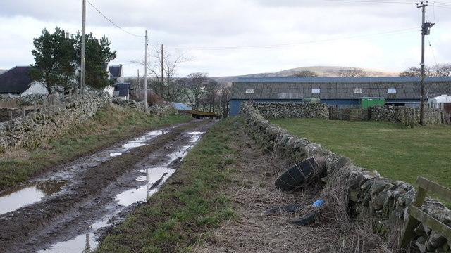 Trabrown Farm
