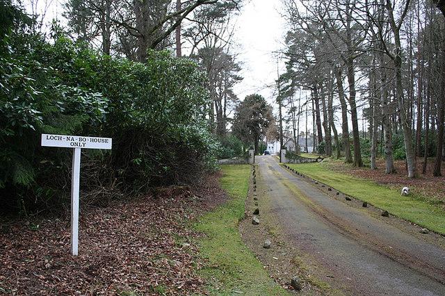 The avenue to Loch Na Bo House