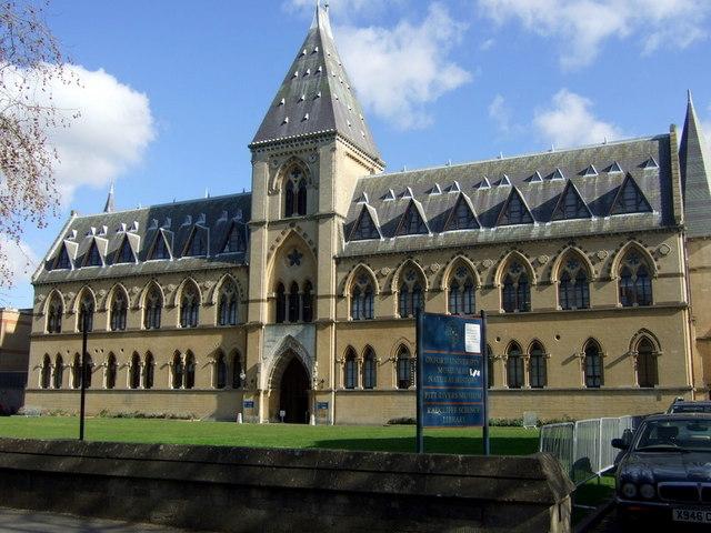 The University Museum