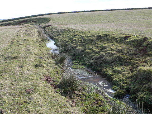 Eden Burn, tributary of the River Tweed