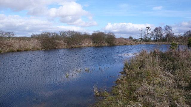 Pond near Middlethird
