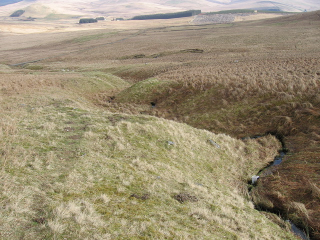 Rae Cleuch below Comb Law