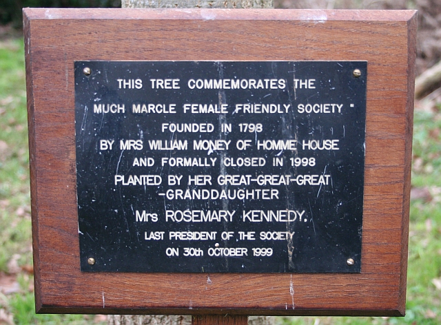 Plaque by the Commemorative Tree