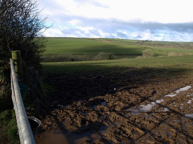 Field near Badgall