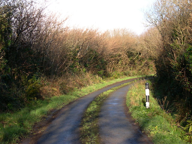 Treven Lane