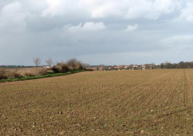 Looking north across fields