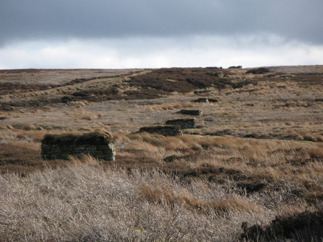 Line of grouse butts on Hunstanworth Moor