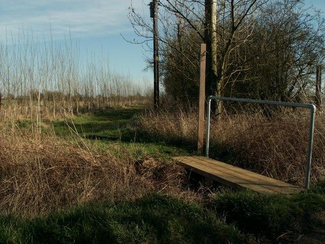 Footpath to Little Tey