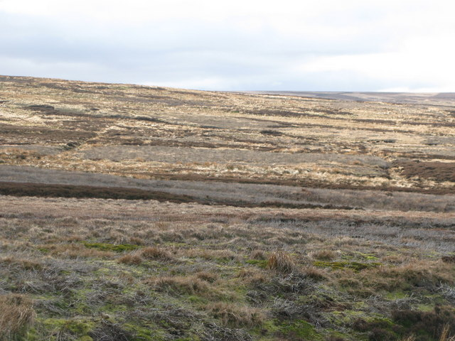 Hunstanworth Moor (3)