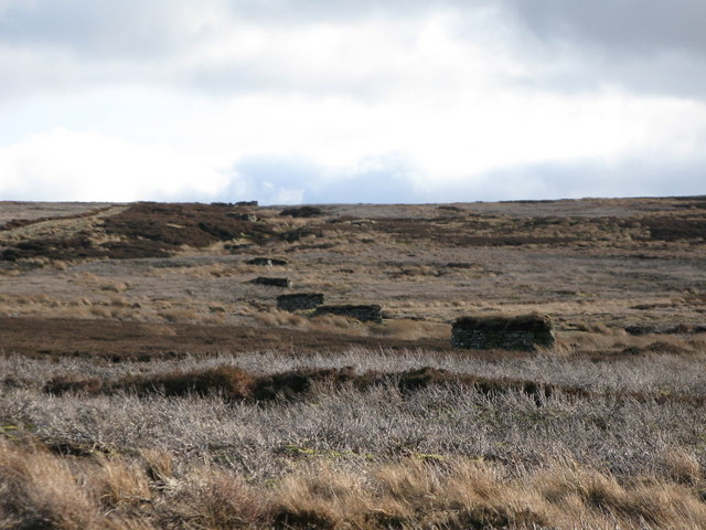Line of grouse butts on Hunstanworth Moor (2)