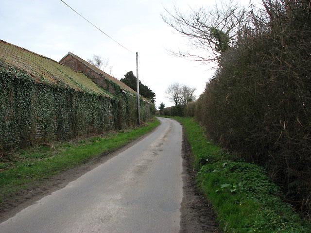Quiet lane to Witton Bridge