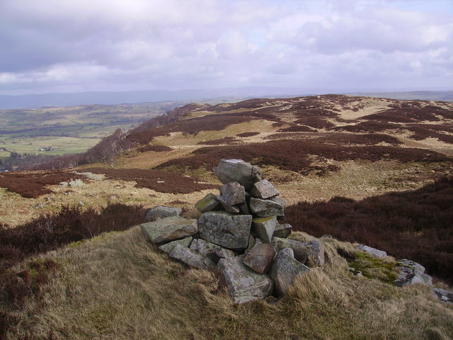 Cairn, Naddle Forest