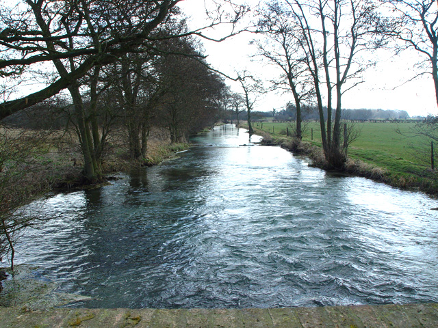 Lowthorpe Beck - Downstream