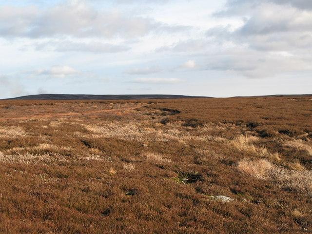 Hunstanworth Moor (4)