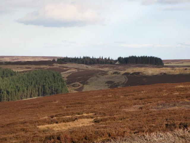 Hunstanworth Moor (5)