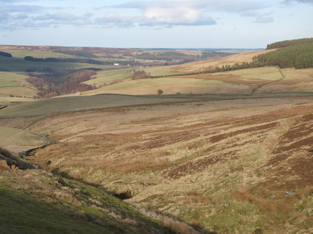 Pastures and moorland above Smithy Cleugh