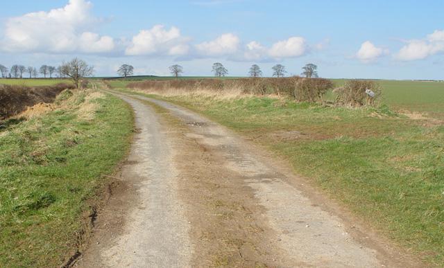 Sandy Lane, near Kilham, East Yorkshire