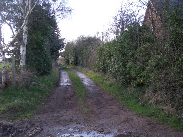 Track off Badger Lane
