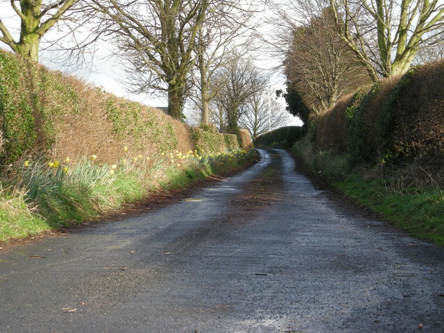 Drive to Heath House Farm