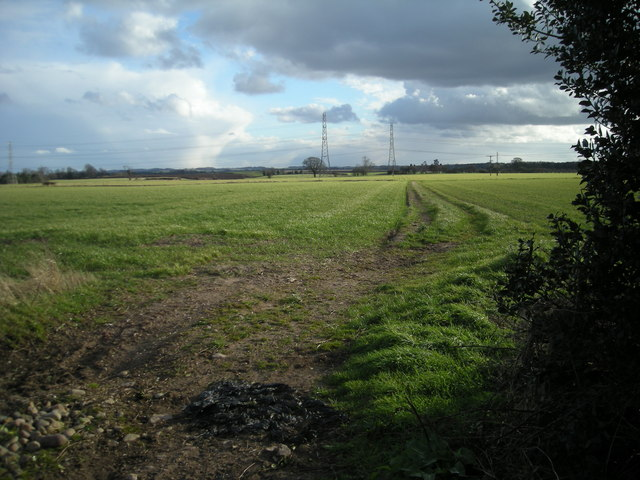 Open fields crossed by power cables