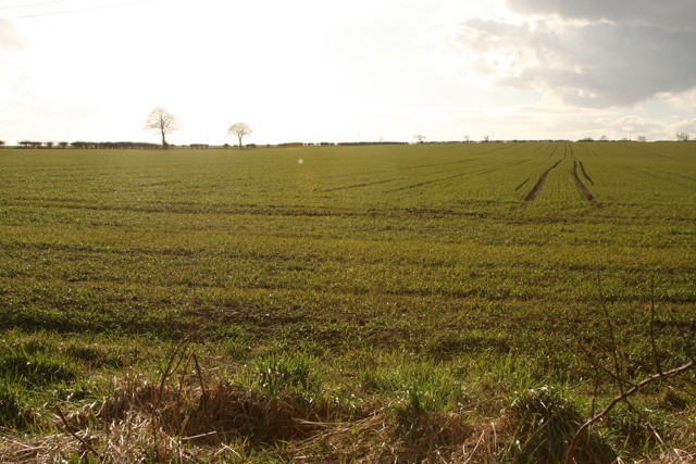 Southlands, south of Kilham, East Yorkshire