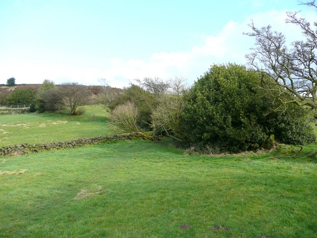 Field boundary, Stainland