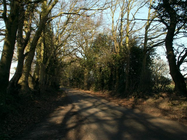 Lodge Lane, close to Hillhouse Farm