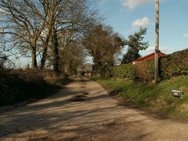 The road to Bloomfield's Farm