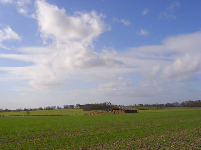 Farmland, South Weston