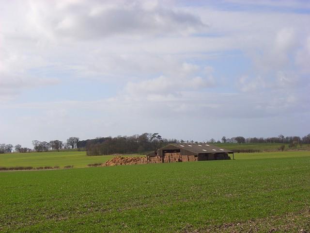 Farmland and barn, South Weston