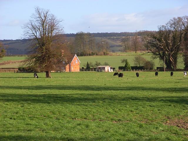 Pasture, Shirburn