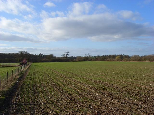 Farmland, Pyrton
