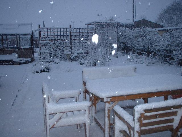 Back Garden in Winter 2