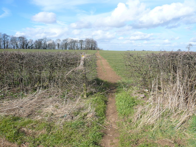 Footpath View near Glapwell