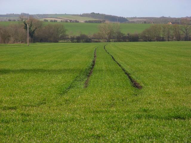 Farmland, Aston Tirrold