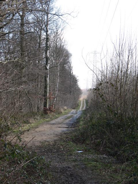 Footpath on Potterton Moor
