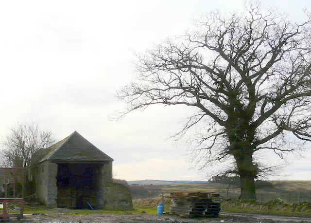 Old stable at Bogbain