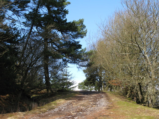 Track to Spring House