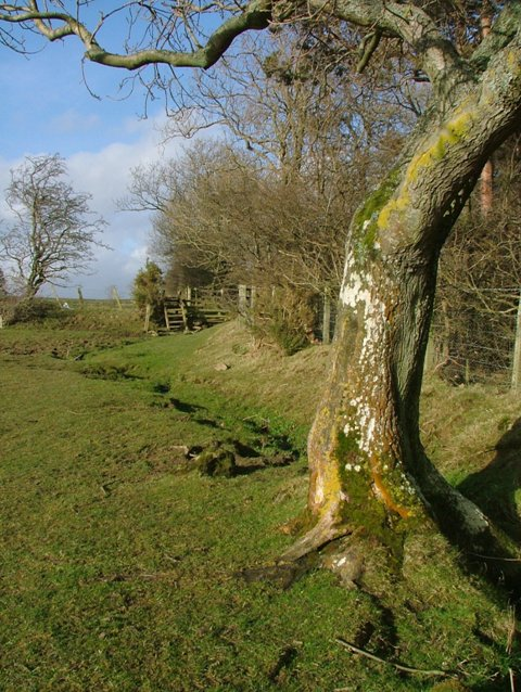 Public Footpath From Hole House